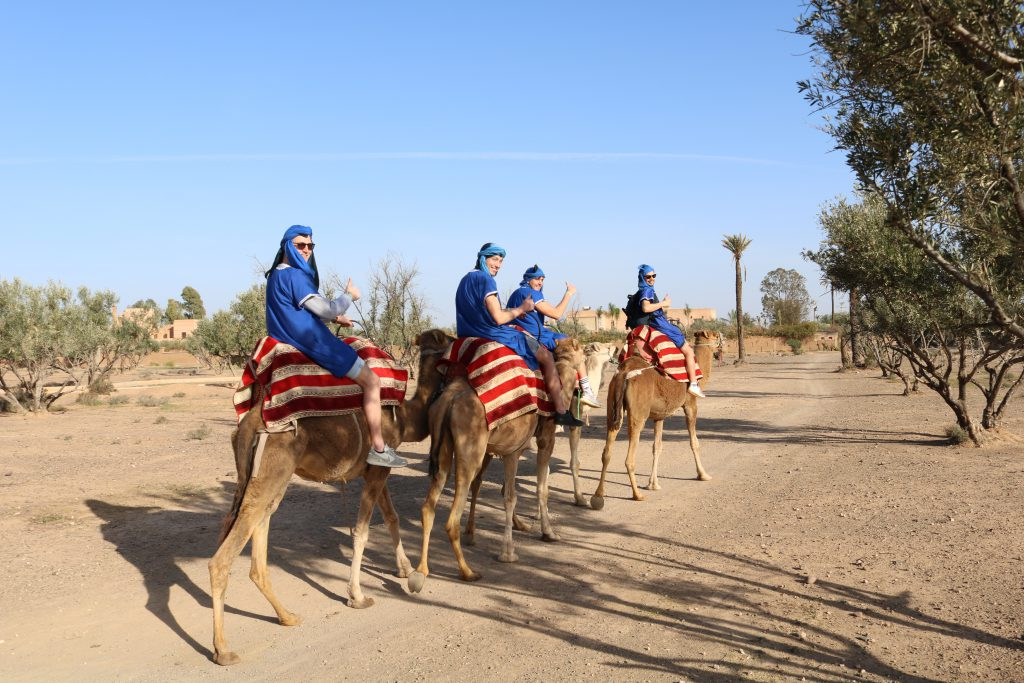 Kamelentour Marrakech